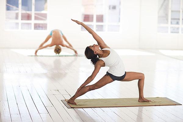 Yoga Asana Pose Hatha