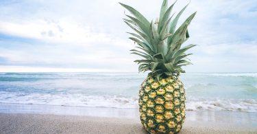 Ananas de bord de mer