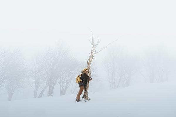 Forest hug sous la neige